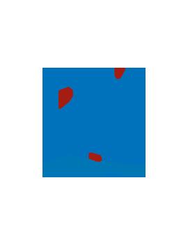 Circuit moto Jerez ( 10/11 NOVEMBRE )